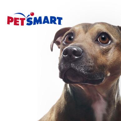 Pet Smart Sale